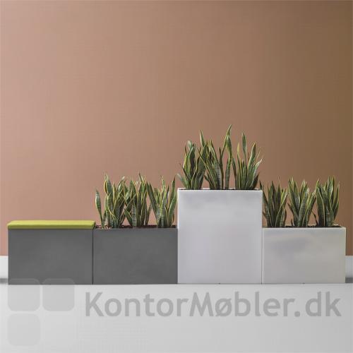 KADO plantekasse kan vælges i flere farver og højde 60 eller 100 cm
