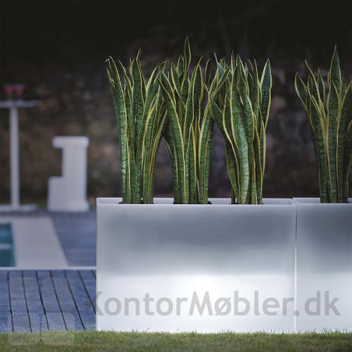 KADO plantekasse med lys, giver et flot look i mørket