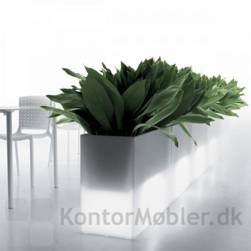 KADO plantekasse i hvid med lys